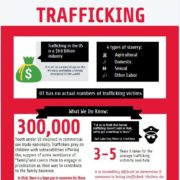 Human Trafficking Infographic